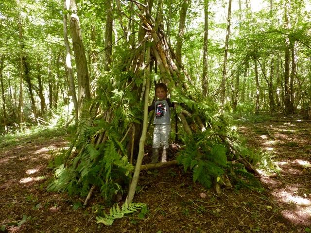 Nếu không chuẩn bị lều bạn có thể dựng tạm chỗ trú ẩn đơn giản bằng cành cây và lá xung quanh