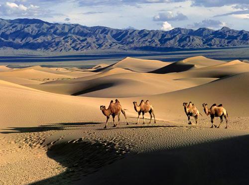 Gobi là sa mạc lớn thứ 5 của thế giới
