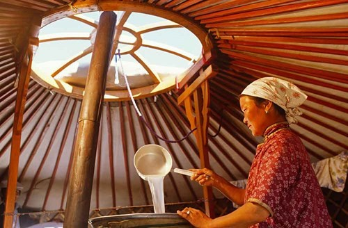 Rượu Arkhi là một đặc sản chỉ có tại các vùng nông thôn của Mông Cổ