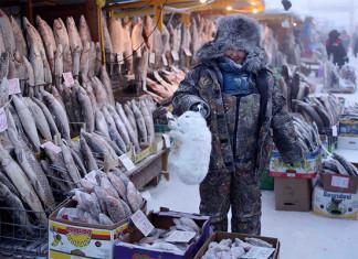 Nguồn thực phẩm chủ yếu là thịt tuần lộc, thịt ngựa và các loại cá