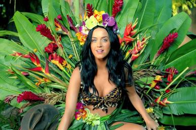 Tiếng hát Katy Perry – Roar