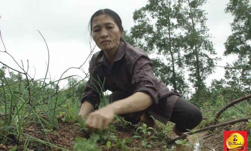 Nỗi cơ cực của hai người mẹ đơn thân ở thôn nghèo tỉnh Quảng Bình