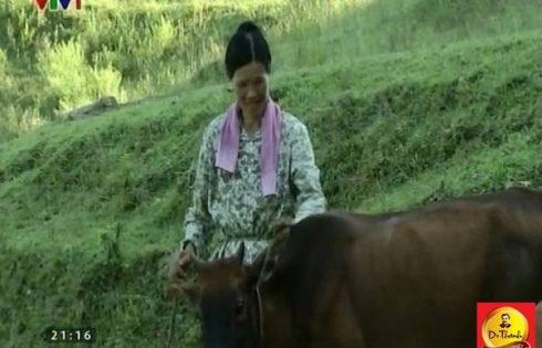 Trà Dr Thanh giúp gia đình ở vùng Tây Bắc thoát nghèo