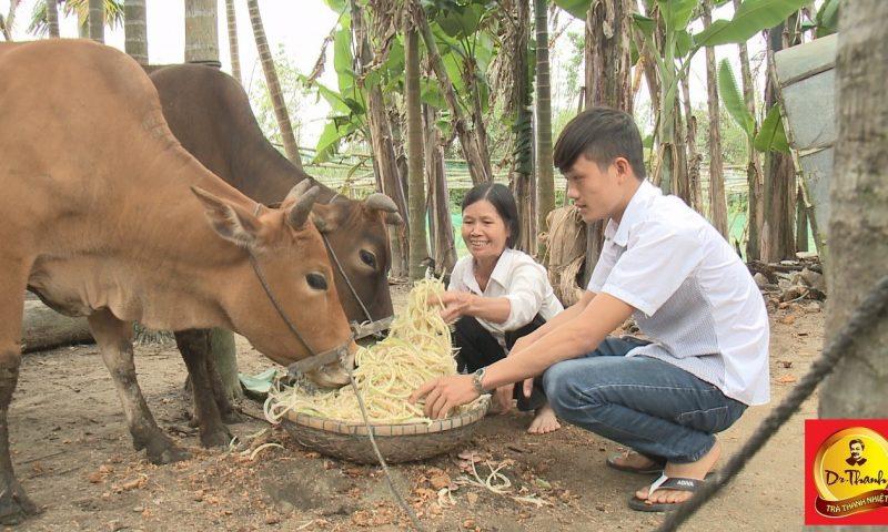 Trà thanh nhiệt Dr Thanh mang xuân ấm áp đến gia đình 6 mẹ con ở vùng quê xứ Quảng