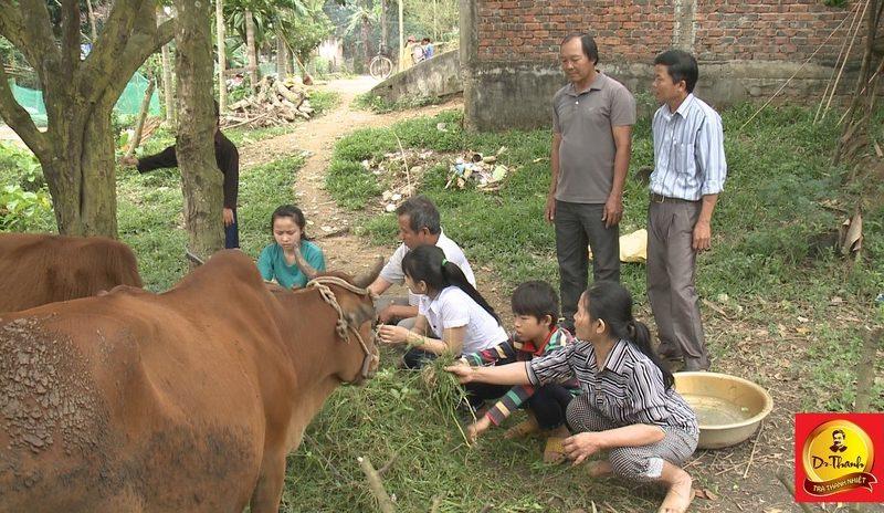 Nỗ lực vươn lên thoát nghèo của một gia đình ở Quảng Nam