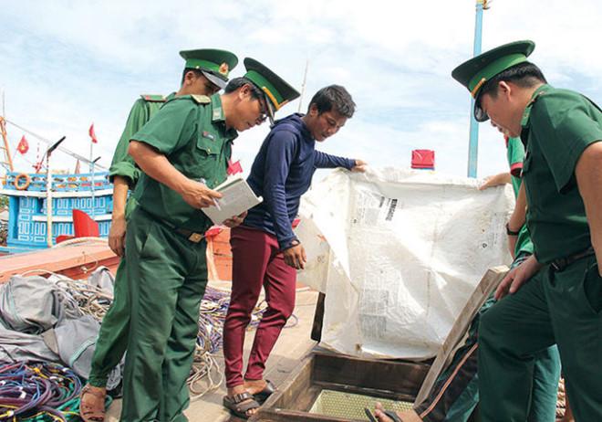 Nguy cơ mất trắng nguồn cá ở biển Đông