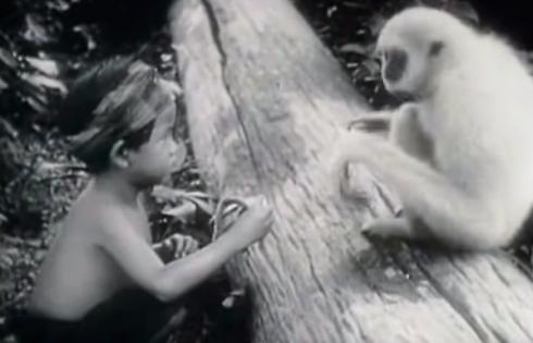 Bản hùng ca trong rừng thẳm – Phim Pháp năm 1926 về Đông Dương hoang dã