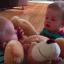 Cuộc chiến những đứa trẻ sinh đôi
