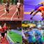 Thắng lợi toàn diện của thể thao Việt Nam tại SEA Games 30