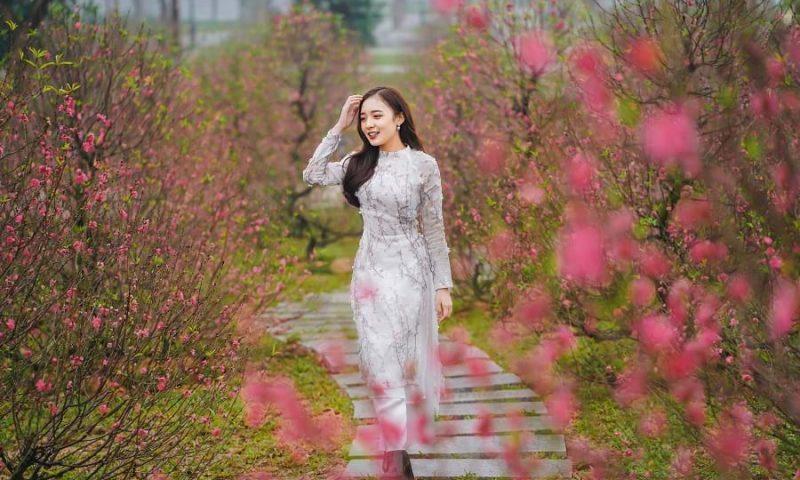 Trải nghiệm chưa từng có với Lễ hội hoa Xuân rực rỡ ở ba đại đô thị