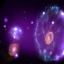 Những đóa hoa của vũ trụ