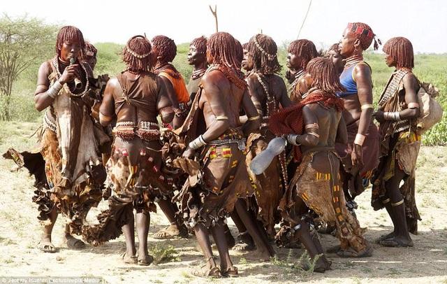 Lạ lùng bộ tộc đàn ông phải khỏa thân nhảy qua lưng bò để… lấy được vợ