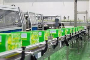 Quy trình sản xuất trà xanh đóng chai